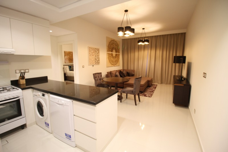 Furnished |Biggest 1 BR APT | For Sale |