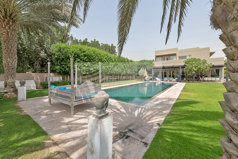 Unique Large Plot   Fully Upgraded   Private Pool