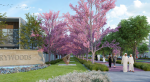 Pay in 7 Yrs| Cherry blossom Landscaping